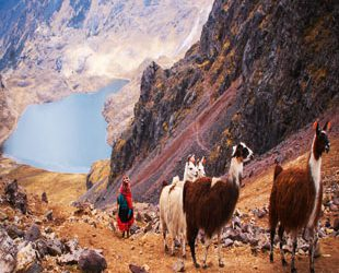 Lares Valley  Trek To Machupicchu 4 Days / 3 Nights