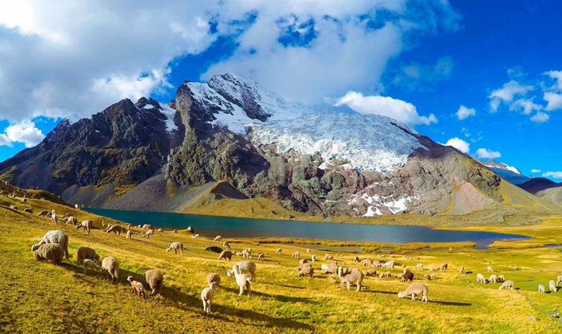 Ausangate-Rainbow-Mountain-Trek-6-Days-5-Nights2