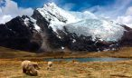 Ausangate-Rainbow-Mountain-Trek-6-Days-5-Nights3