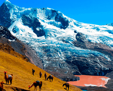 Salkantay Trek and Jungle Expeditions in tourist Package 9 Days / 8 Nights